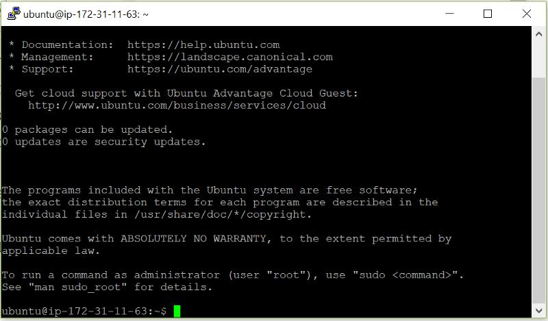 Dentro de Ubuntu Server