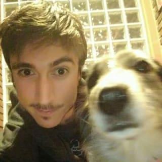 Vitor Vanacor profile picture