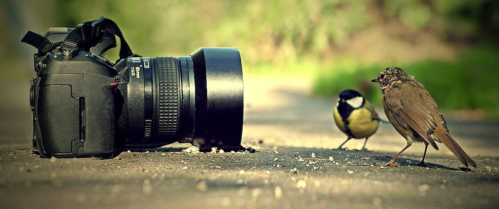 Lenses: The What and How