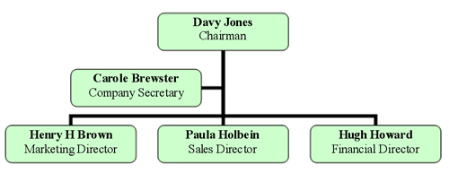 Organizational chart that shows relationships amongst employees at a company.