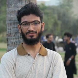 Mehr Muhammad Hamza profile picture