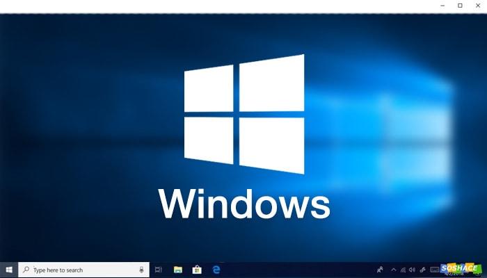 OS Showdown: Windows vs. macOS vs. Linux for Web Development