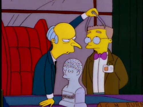 Mr Burns Phrenology
