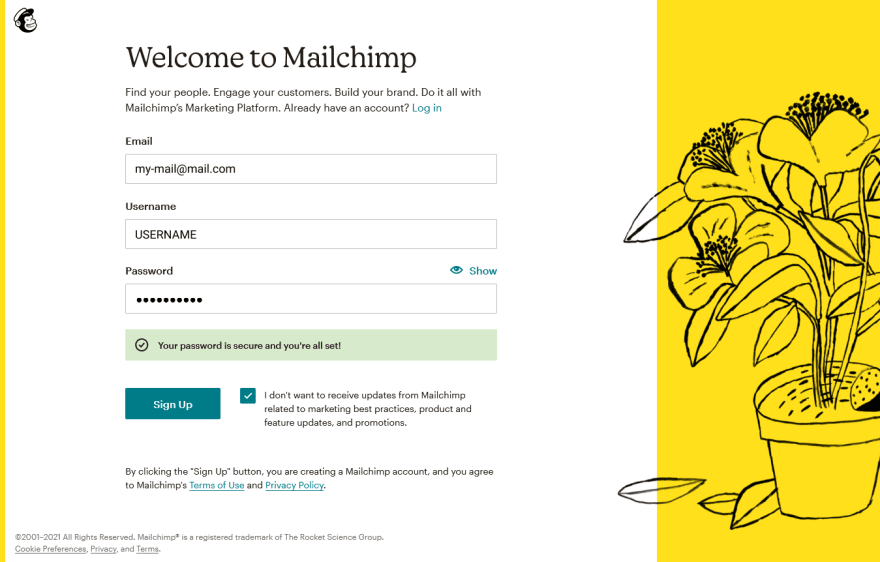 Mailchimp sign up
