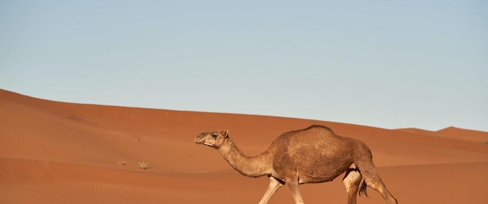 Cover image for Utilizando Apachel Camel para agregar endpoints de REST APIs