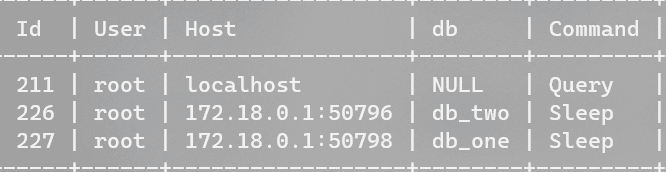 Terminal console showing multiple database connections