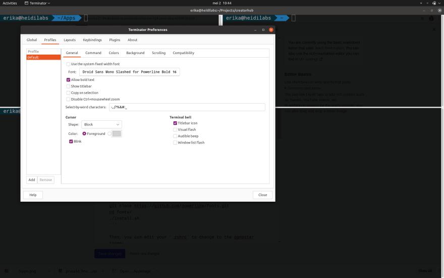 Screenshot of Terminator settings