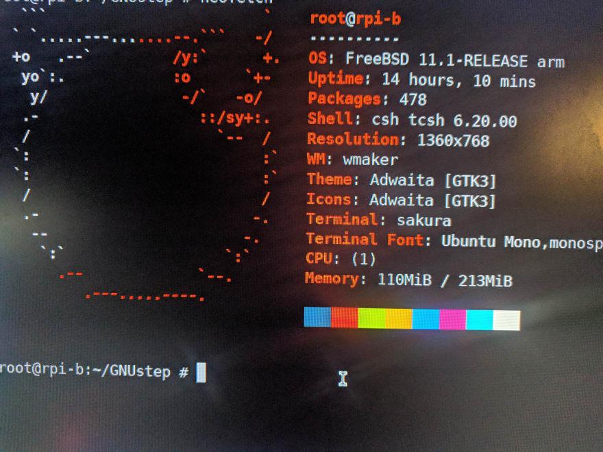 RaspBSD_Fetch