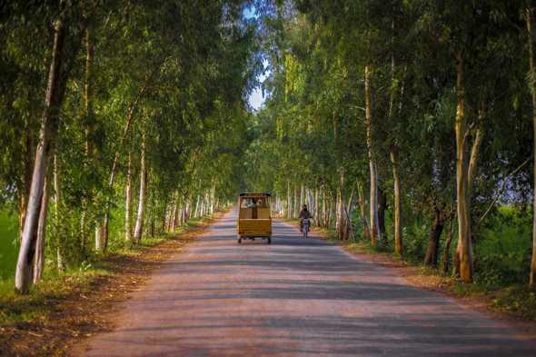 A beautiful pathway of village, Punjab Pakistan