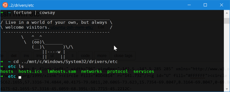 WSL Ubuntu bash example oh-my-zsh cowsay etc.