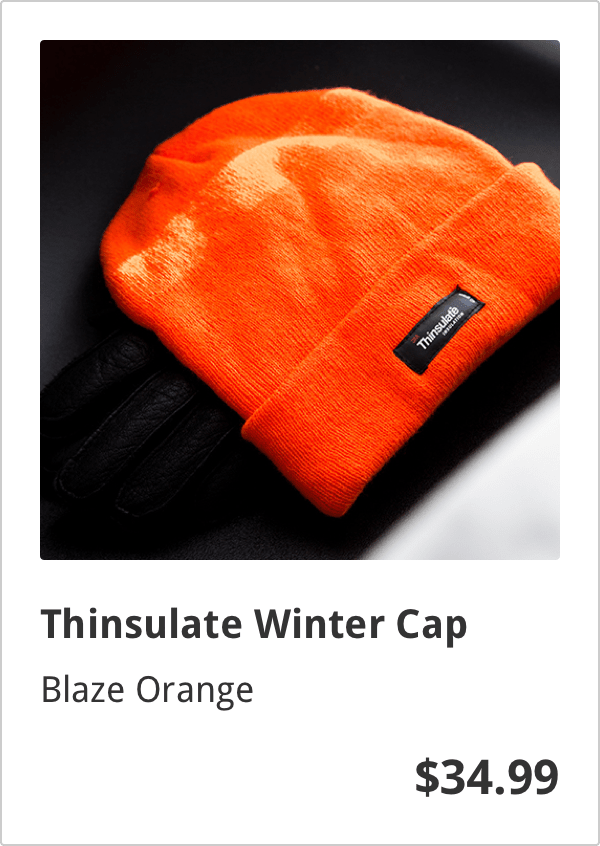 "ecommerce listing showing orange knitted winter hat, the name of item ""Thinsulate Winter Cap"", and the $34.99 price"