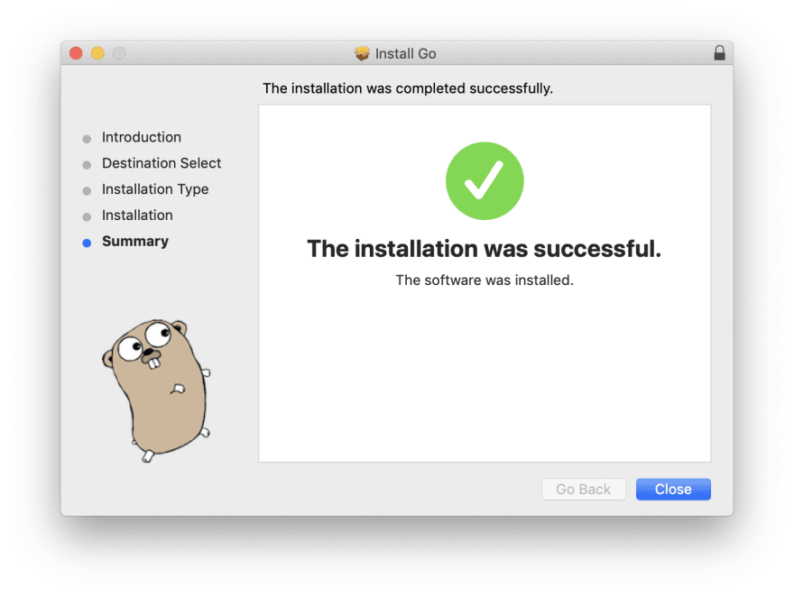 golang installation success