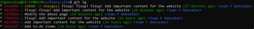 Updated commit log