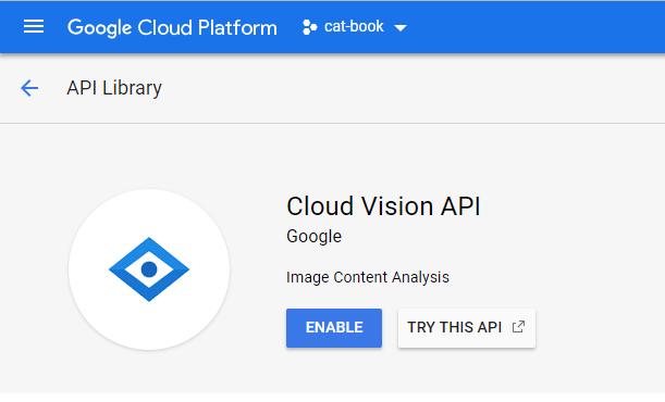 Enable Google Cloud Vision API