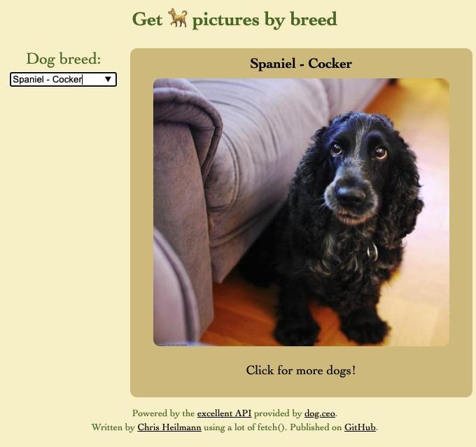 Dog browser Desktop version