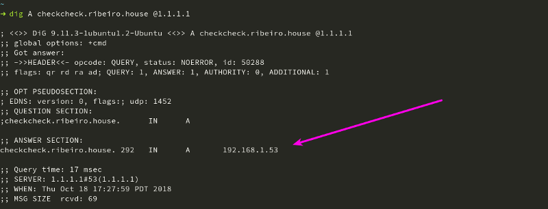 Output from dig command on checkcheck.ribeiro.house