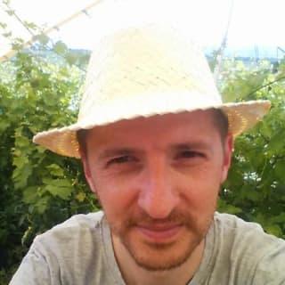 Adrian Voica profile picture