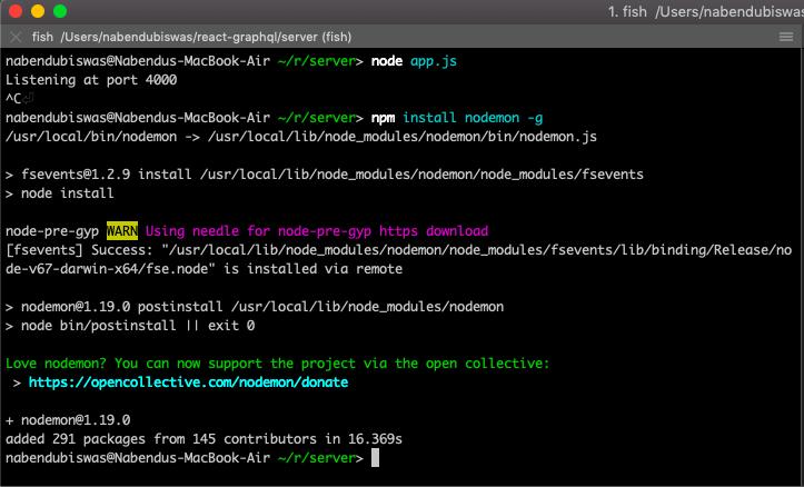 install nodemon
