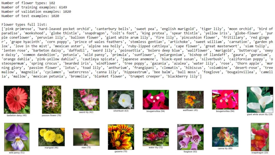 Flower Samples