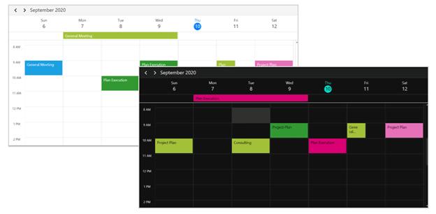 Custom Themes in WPF Scheduler