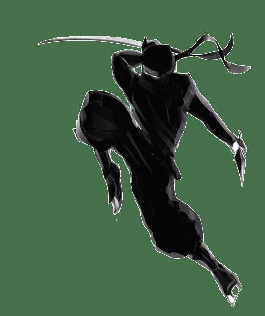 ninja image served via Cloudinary