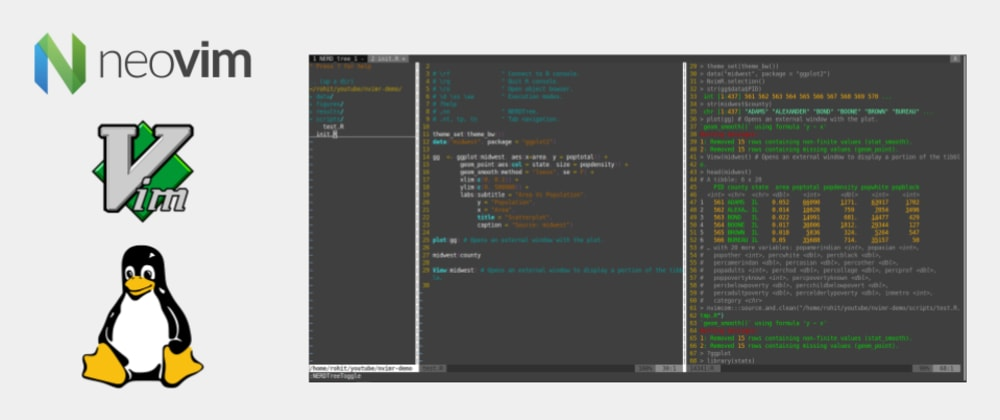 Cover image for How to use Neovim or VIM Editor as an IDE for R