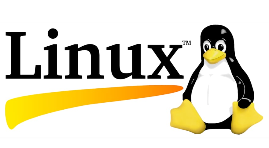 Penguin aka tux, the mascot for the Linux Kernel.