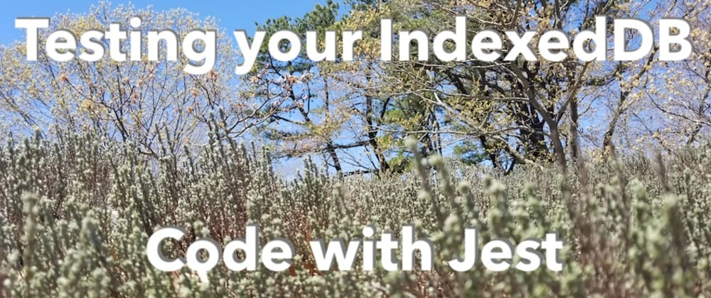 Cover image for Testing your IndexedDB code with Jest