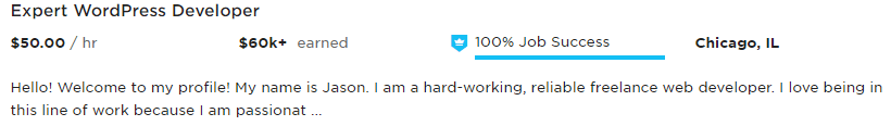 Bad Example of a UpWork Profile Overview