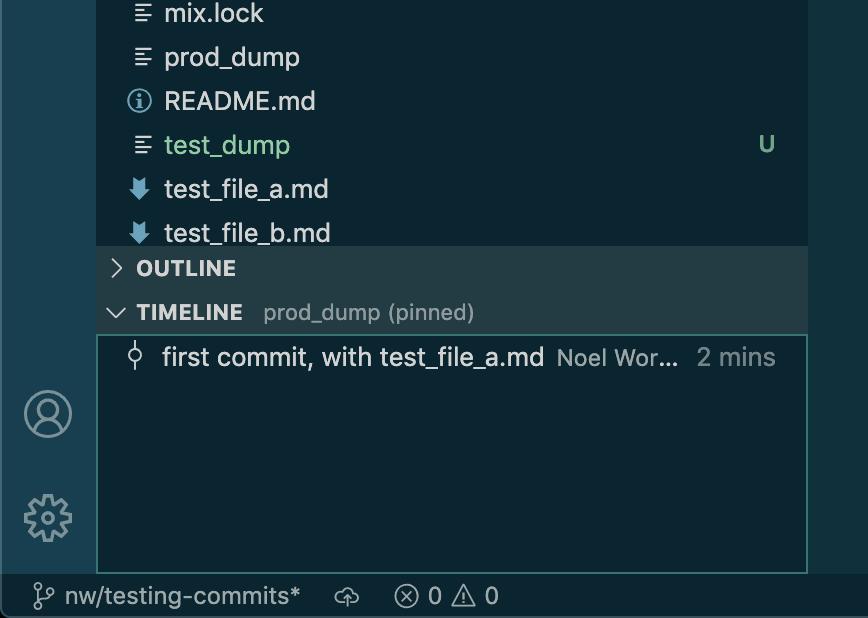 VSCode Timeline View
