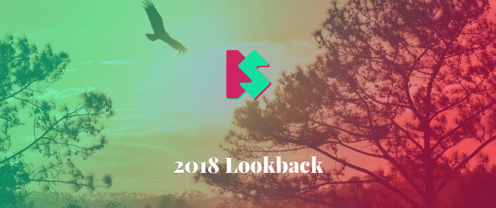 Cover image for 2018 Lookback