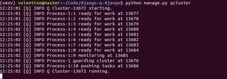 Django Q cluster
