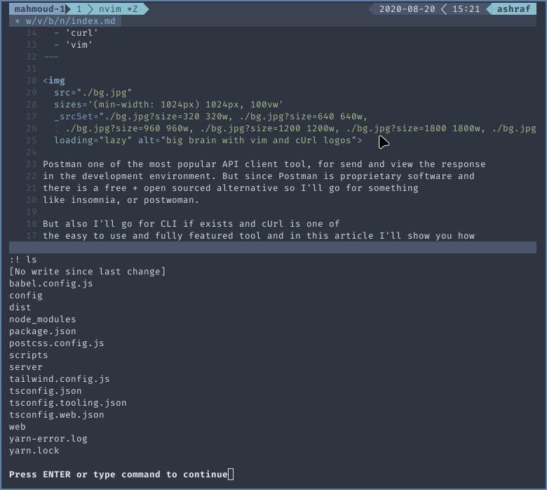 screenshot for ls command inside vim