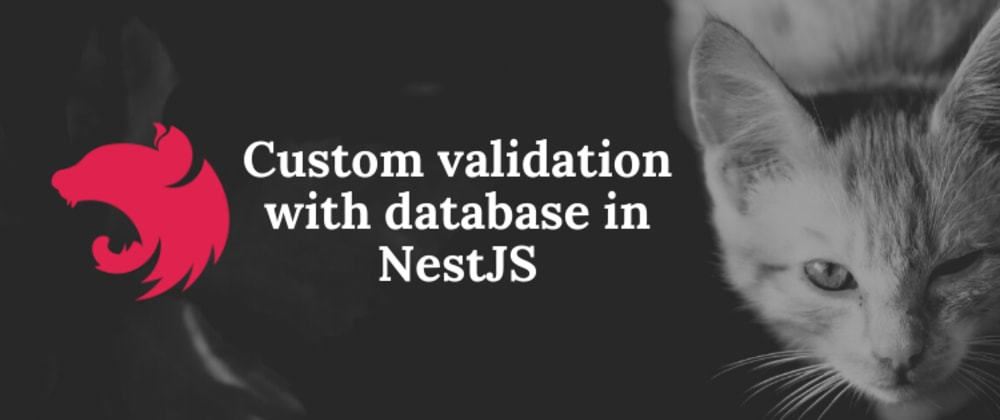 Cover image for Custom validation with database in NestJS