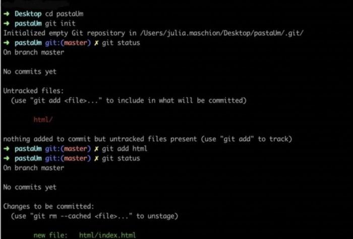 imagem de um terminal como exemplo