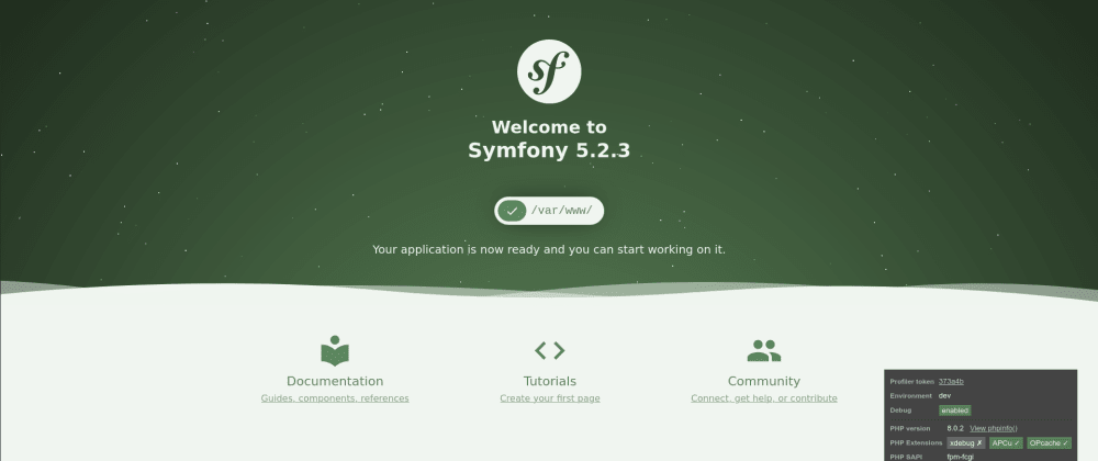 Cover image for How to build a clean Docker Symfony 5.2 PHP8 PostegreSQL Nginx project