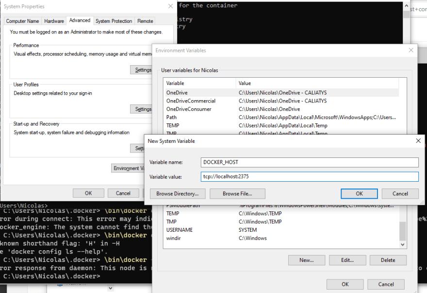 Add DOCKER_HOST as system variable