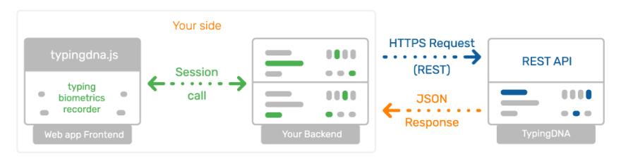 Integrate TypingDNA API