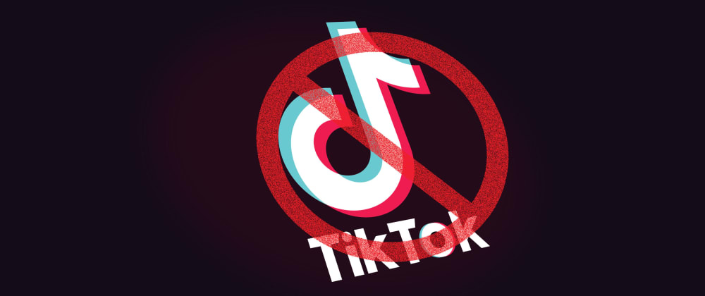 Cover image for After TikTok what's next?