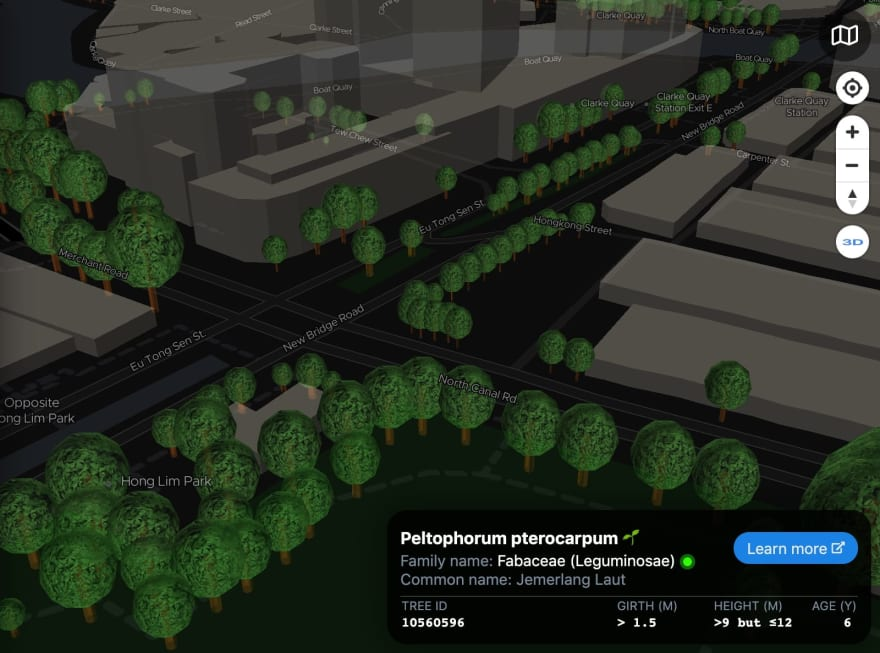 ExploreTrees.SG 3D realistic trees — trees at road intersection