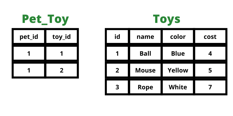 Pet toy table with two rows filled in. Both with matching values in the pet id column.
