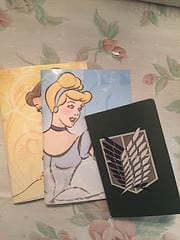 3 Notebooks. Belle is in the back, Cinderella the middle, and an anime journal on top