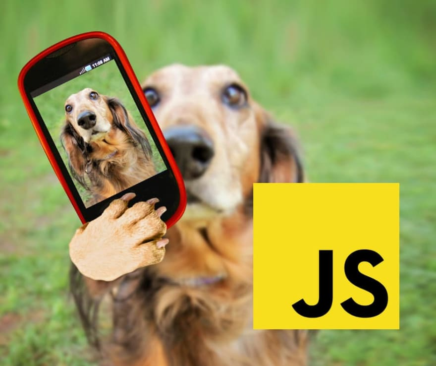 How to Access Device Cameras with JavaScript (Front and Rear)