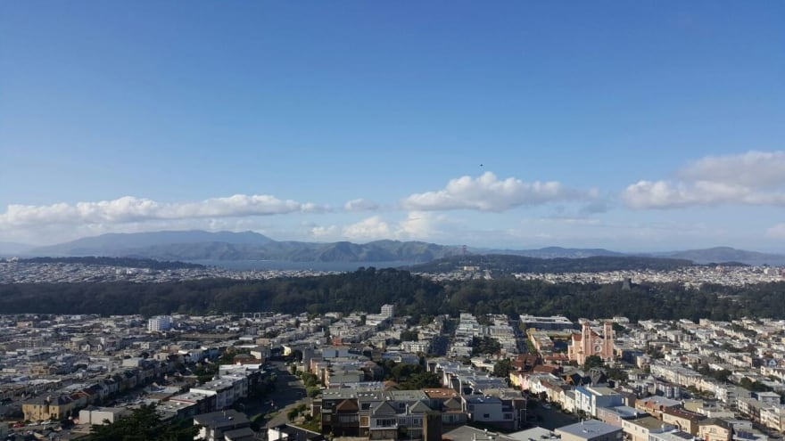 Golden Gate Park, from GrandView Park, SF