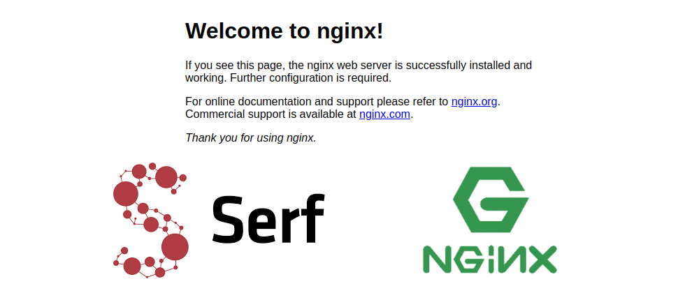 Cover image for NGINX Load balancer Cluster with automatic configuration and node failure detection using Serf