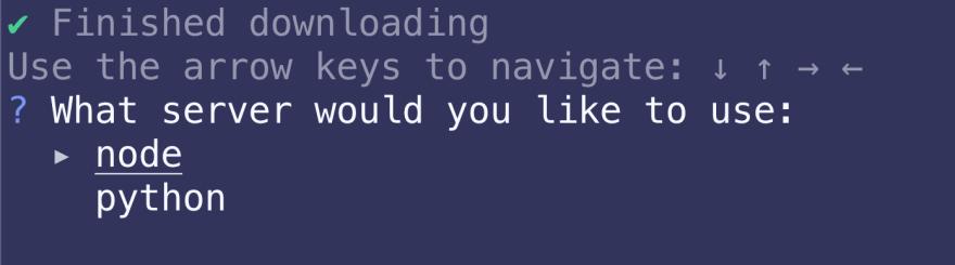Screenshot of options
