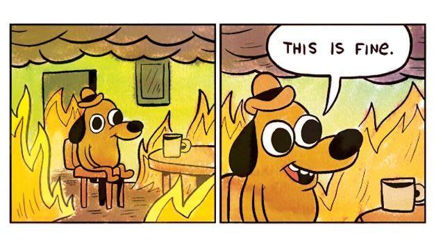 Image result for everything is fine dog meme