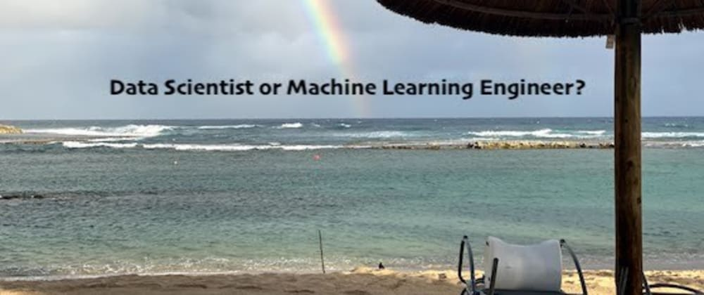 Cover image for Data Scientist or Machine Learning Engineer?