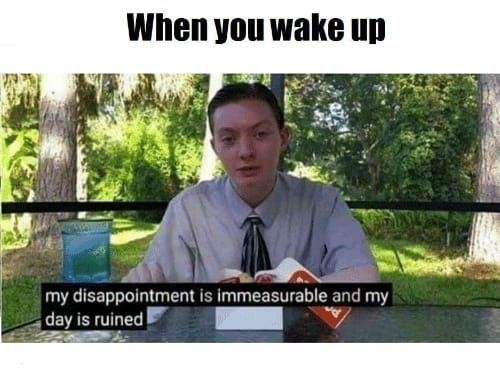 My disappointment is immeasurable and my day is ruined meme