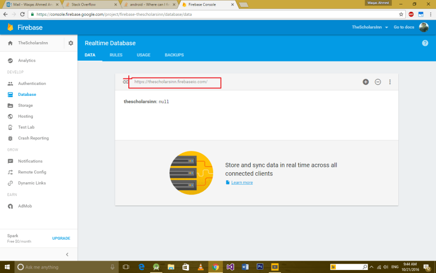 firebase url image, if broken then inform me